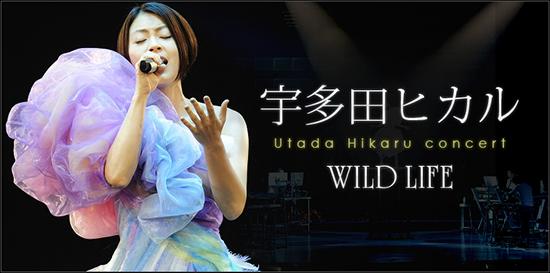 101217_utadahikaru_top