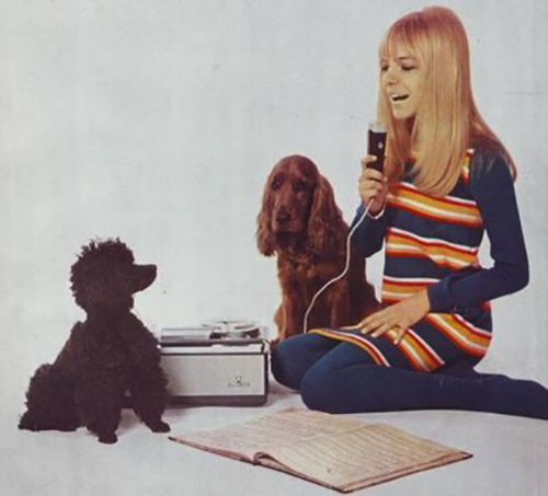 France+Gall+francedogs
