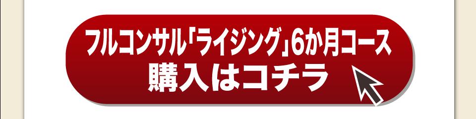 フルコンサル「ライジング」6か月コース